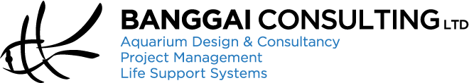 Banggai Consulting